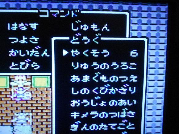 s-rinkaku89150213dqhukkatsu06