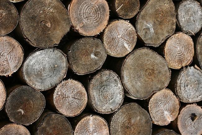 wood-252033_960_720