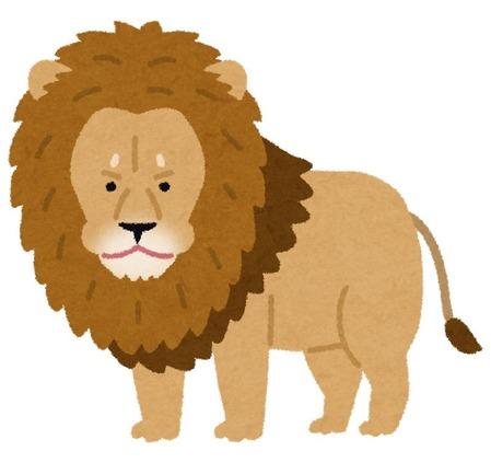 animal_lion