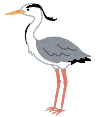 bird_aosagi