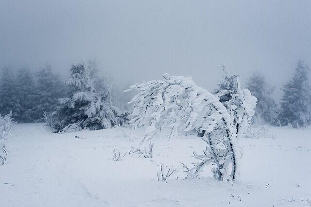 【悲報】 アメリカ、最高気温33度の翌日に気温が2度まで下がり雪が降る