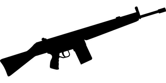 gun-36921_960_720