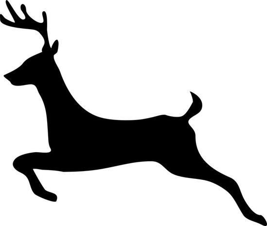deer-295399_960_720