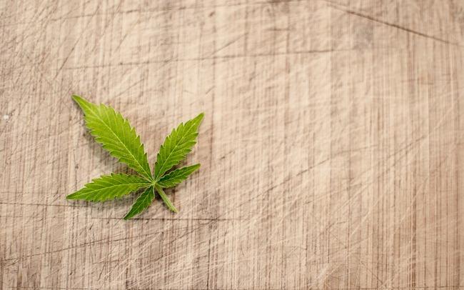 marijuana-3065621_960_720 (1)