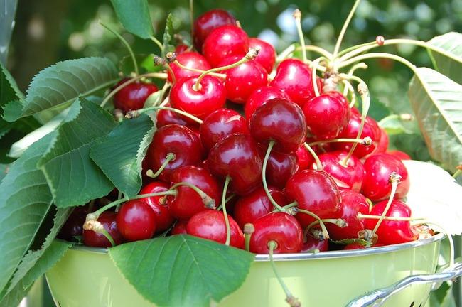 cherries-162900_960_720