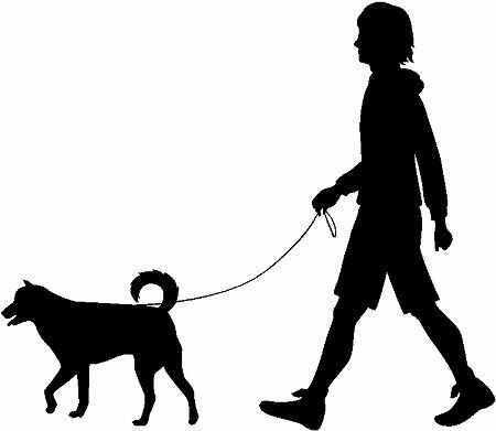 犬の散歩_1