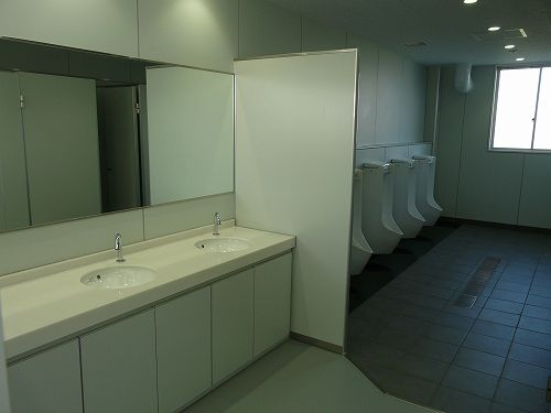 mans-toilet1