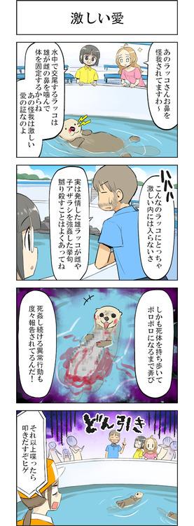iki_243_04_o_