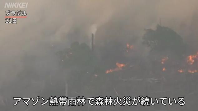 アマゾンで森林火災