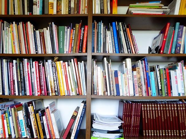 books-797418_960_720