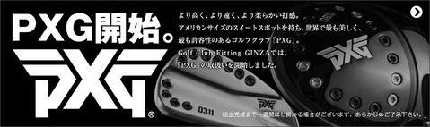 gcfg_pxg[1]