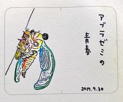 1fba1276.jpg