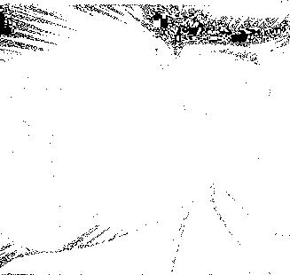 eteraya