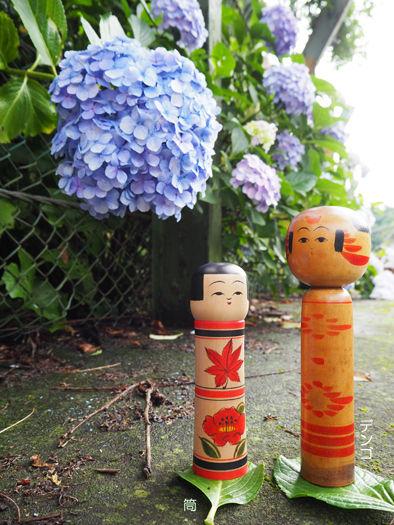 筒とデンゴと紫陽花