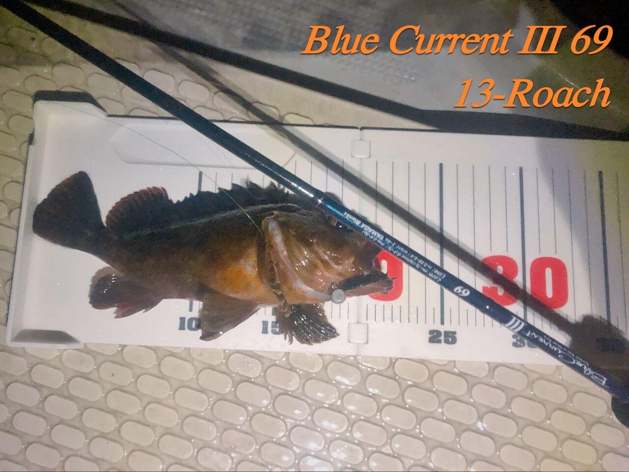 ブルー カレント 3 インプレ
