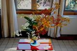 花で彩る西洋館19