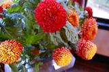 花で彩る西洋館42