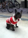クリスマスバージョン2011その2
