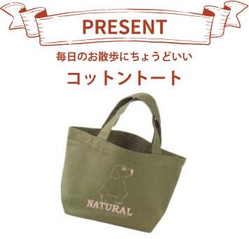 gift_b_bag