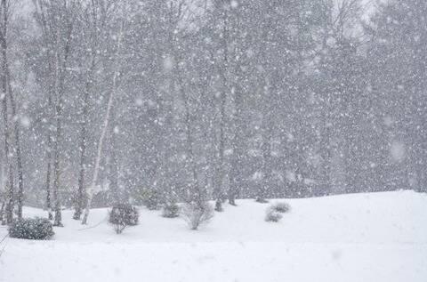 雪で会社に