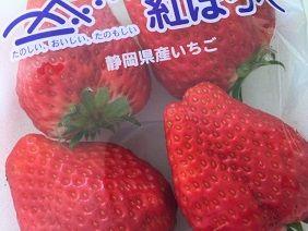 013019 苺