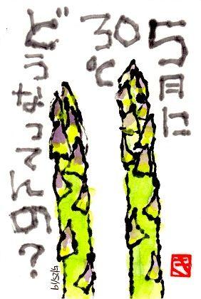 052519 アスパラ