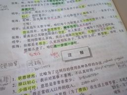 042811 中国語