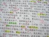 110308 中国語