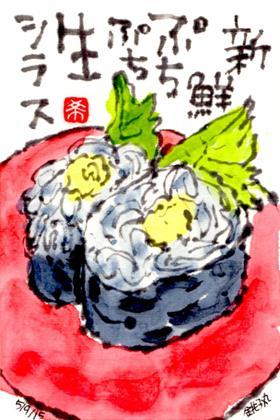 050915 銚子丸シラス