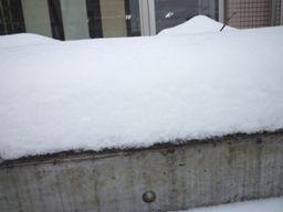 020914 雪