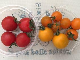 062015 トマト