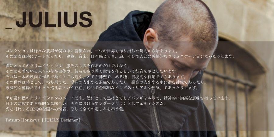 JULIUS完成2