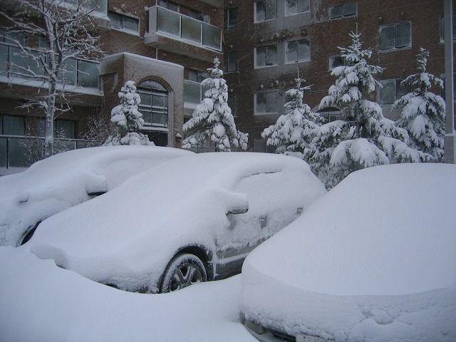 081226大雪クルマ