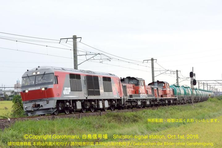95s_DF200 223+DD51 1028+853石油輸送72列車_白鳥信号場2015X01