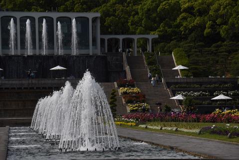 須磨離宮公園のバラ園9