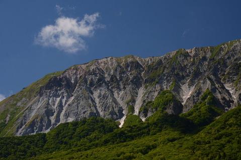 新緑の大山2