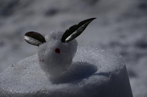 美山の雪景色19