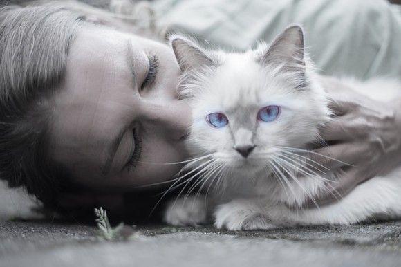 頭を撫でさせてくれるのに8年もかかった元野良猫だけど、実は飼い主の知らないところで...感動の猫愛物語