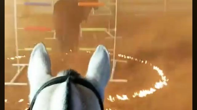 過酷なシチュエーションに慣れるための、警察馬のトレーニング風景