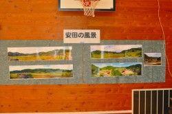 展示物4.jpg