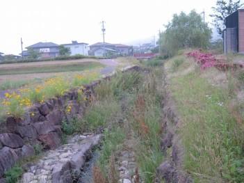 s-20080610056.jpg