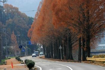山口の秋2.jpg