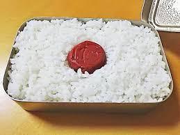 僕「ほいよこれ日の丸弁当!」海外の友人「日本人さあ…何だい、この弁当は」