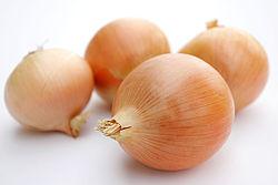 250px-Onions