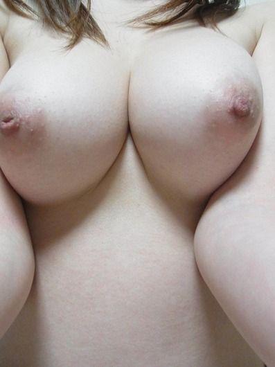 023oppa46