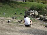 鴨の公園21日