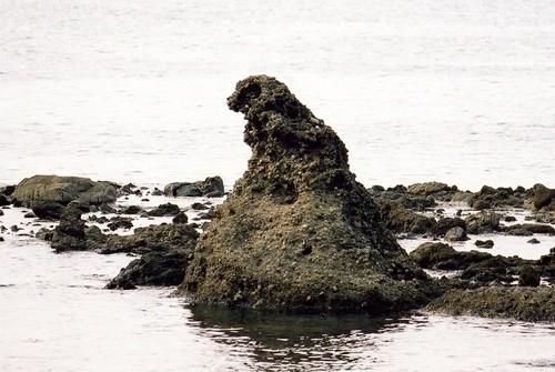 Godzilla-iwa