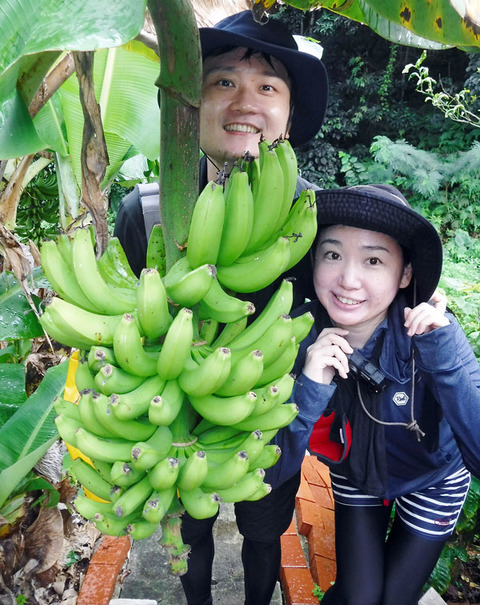 DSCF6553-banana