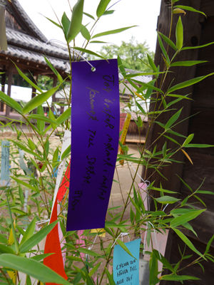 160620Sumiyoshi10