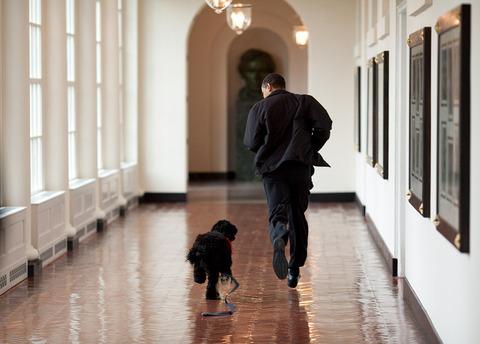 barack-obama-photographer-9